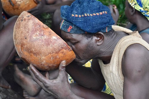 Drinking millet beer from a hollowed-out calabash