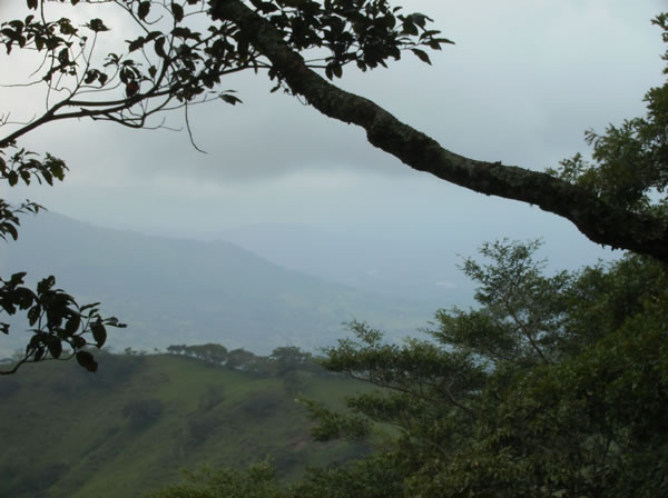 Rainy season lasts from May to November in lush Costa Rica, but has its advantages