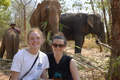 Conservation to preserve elephant habitat in Thailand with Globe Aware