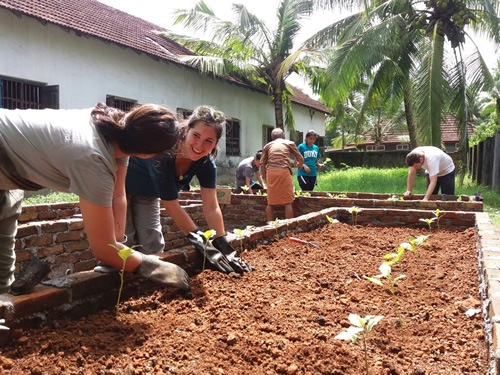 Service learning with agriculture