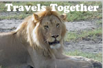 Travels Together Women Tours
