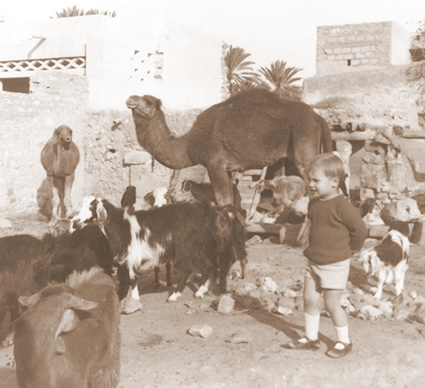 Greg with goats in Morocco