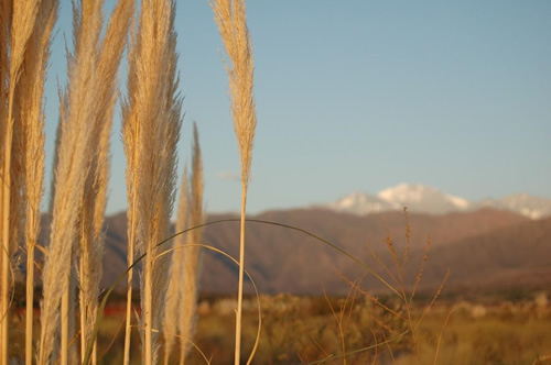 The Andes of Mendoza