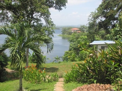 Garden view from house in Panama
