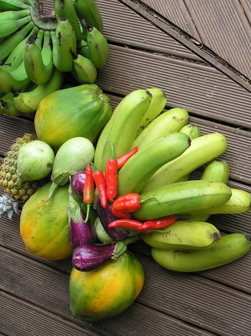 Fiji: Fruits of the Land