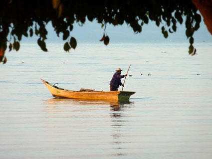 Fisherman in Lake Chapala