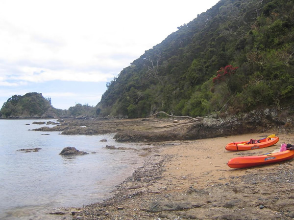 Kayaks on the Bay of Islands, New Zealand