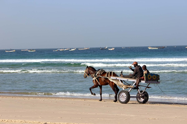 Cart in Senegal by the sea
