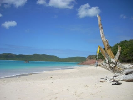 Beach looking on Hermitage bay, Antigua.