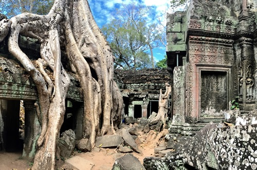 Temple of Ta Prohm at Angkor Wat