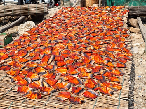 Fish drying on bamboo sticks