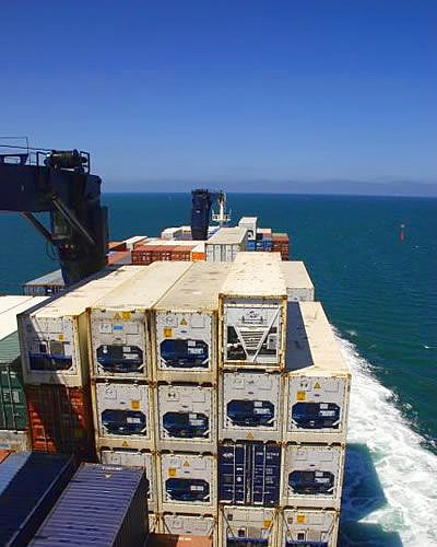 Cargo ship nearing New Zealand