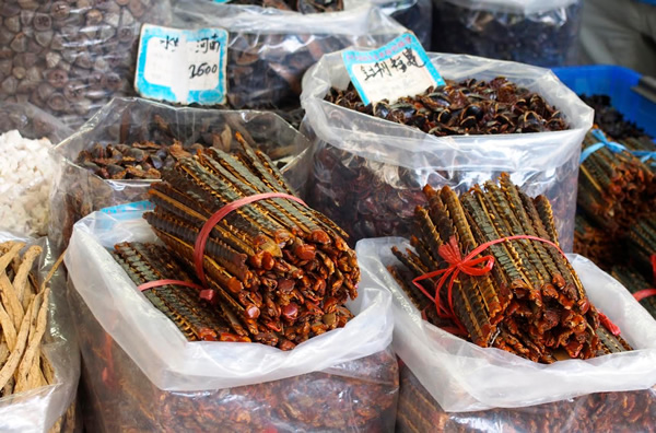 Wu Gong (centipedes) and Zhang Lang (cockcroaches) at the Chinese  medicine market