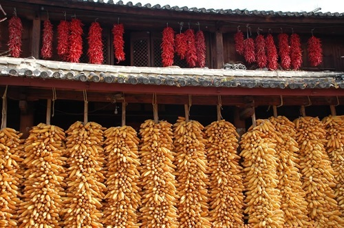 Drying corn and pepper on China trails
