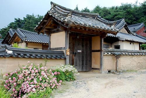 Honoks In South Korea