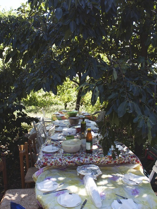 Feasting for the harvest underneath the trees