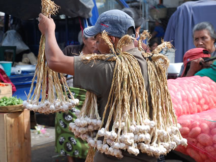 Guatemalan vendor selling garlic