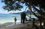 Travel India's Andaman Islands