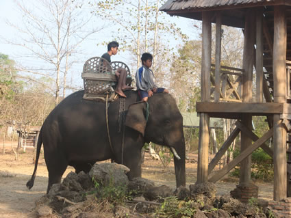 Children riding an elephant in Laos