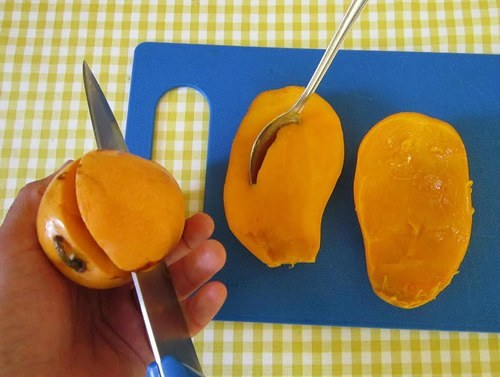 Exploring the exotic fresh fruit of mexico cutting a mango ccuart Image collections