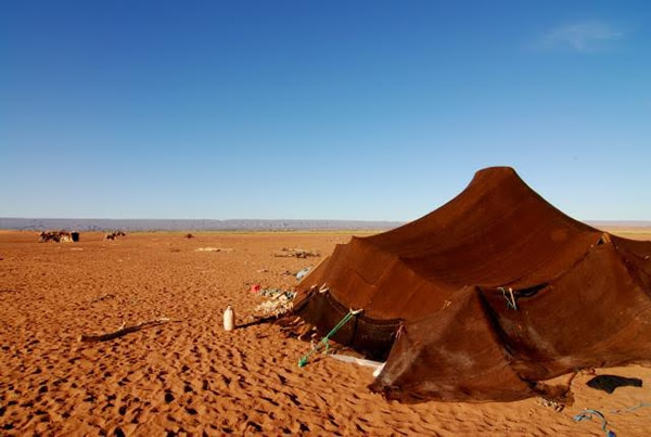 One of the nomadic tents that dot the Sahara desert