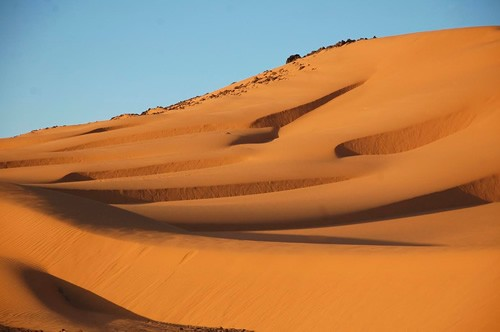 Sand dunes in late afternoon when it is still warm