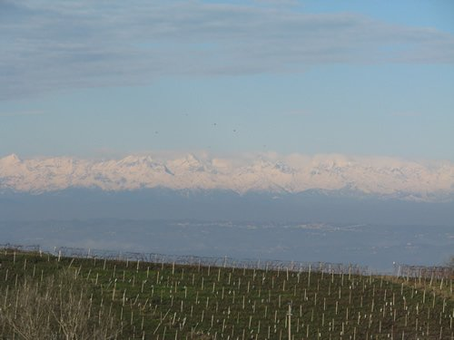 Piemonte, Italy truffle season and wine