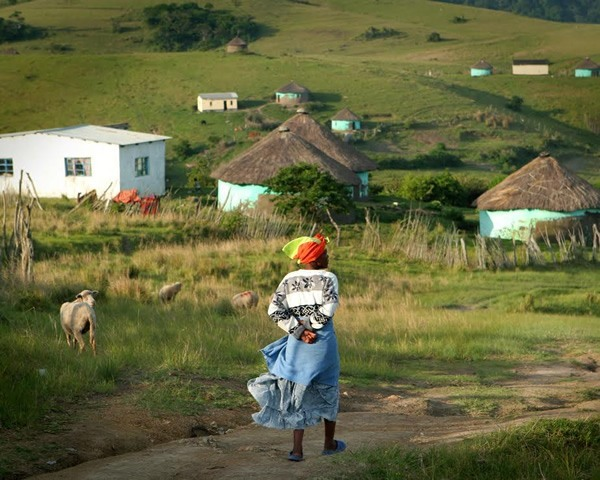 Traditional Xhosa village near Coffee Bay