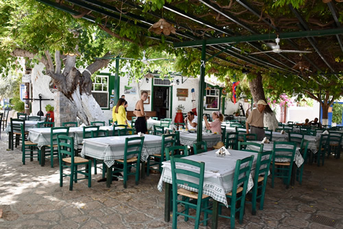 Vine-covered terrace of a restaurant in Hydra