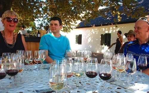 Wine tasting at the estate