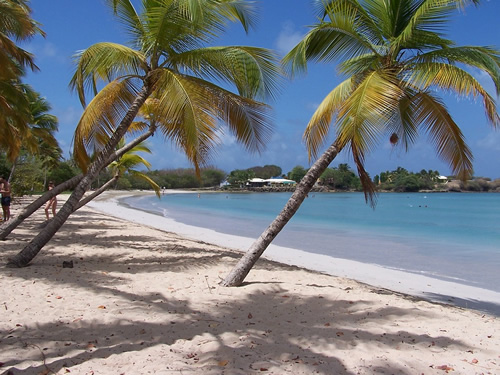 A typical beach in Martinique