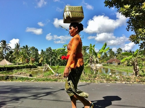 Balinese woman walking to community temple
