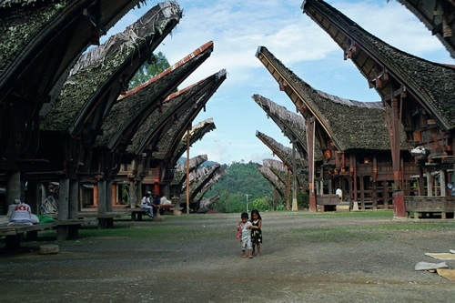 Houses in Tana Toraja, Indonesia