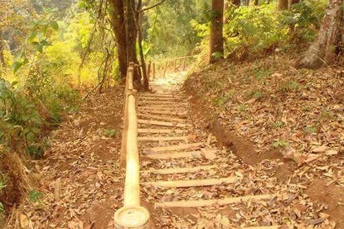 Steps along a trail in the Hilltribe region