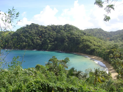 Fisherman's Bay in Tobago