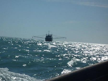 Seasonal Fishing Jobs in Australia