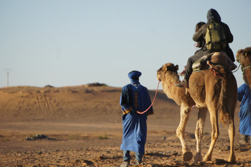 A tour on camel back begins a trek into the desert