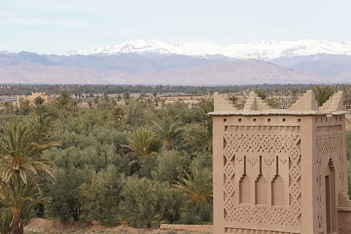 Palm oasia with Atlas Mountains of Morocco in background
