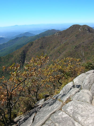 View from a Korean mountain-top.