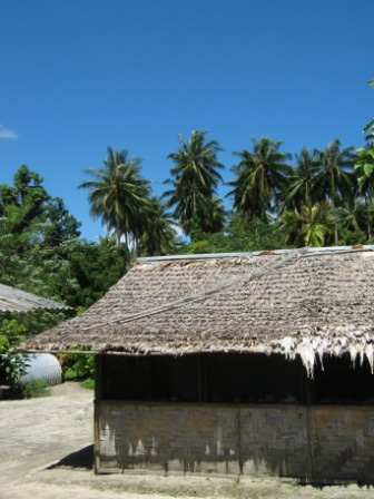 House in the village Papua New Guinea