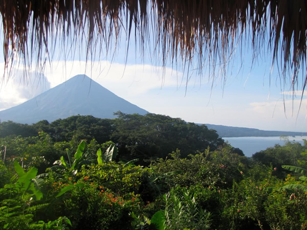 Volunteer work with WWOOF in Central America