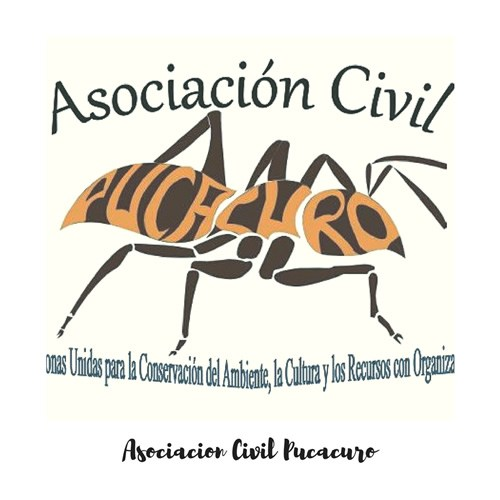 Asociación Civil PUCACURO volunteers