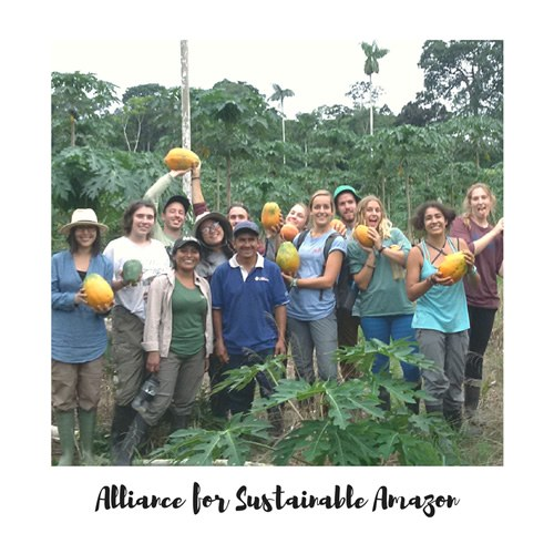 Alliance for Sustainable Amazon volunteers