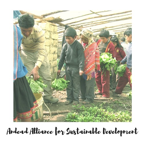 Andead Alliance for Sustainable Development volunteers