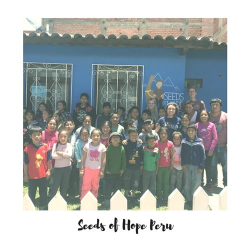 Seeds of Hope Peru volunteers