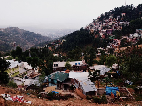 Volunteer in Mcleod Ganj, India