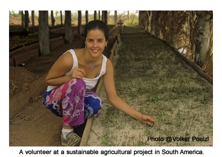 Volunteer in South America in sustainable agriculture