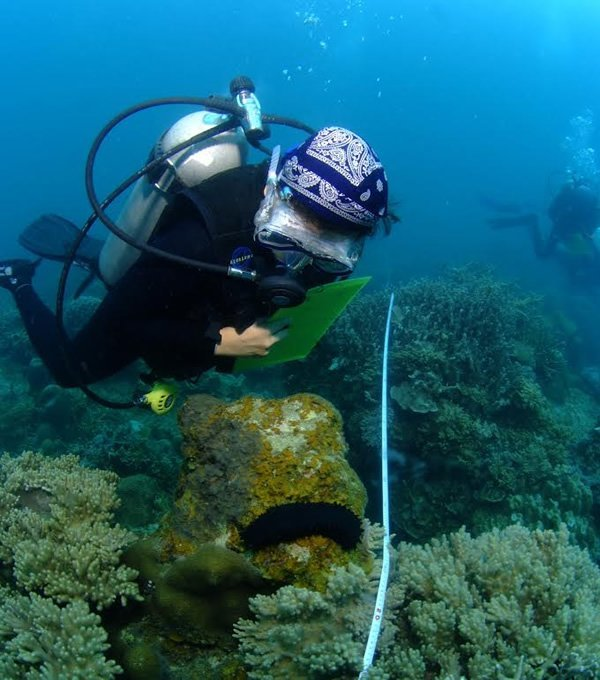 Volunteer gathers data about the coral reef in Malaysia