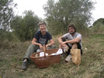 Volunteer in Italy with WWOOF