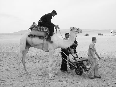 Travel with a Disability in Egypt